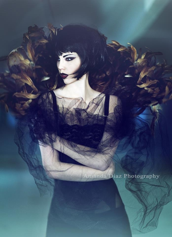 The Hohlwen are ethereally beautiful fallen angels made of shadow that must live…                                                                                                                                                                                 More