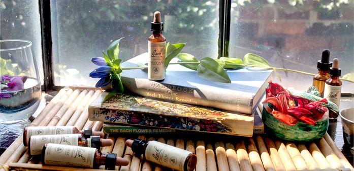 Terapia Bach - remedii florale
