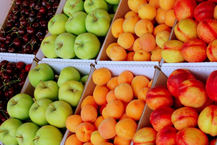 fruit ~ fruit ~ fruit