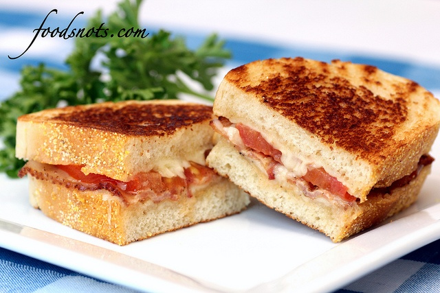 Garlic-Rubbed Grilled Cheese with Bacon and Tomatoes by Food Snots ...