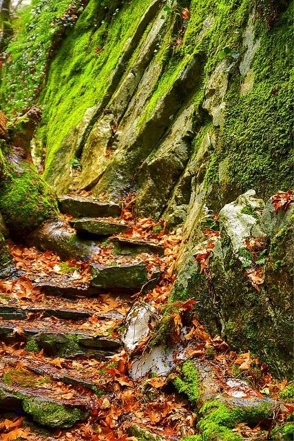 Stone Steps  Kaz Mountains, Canakkale, Turkey