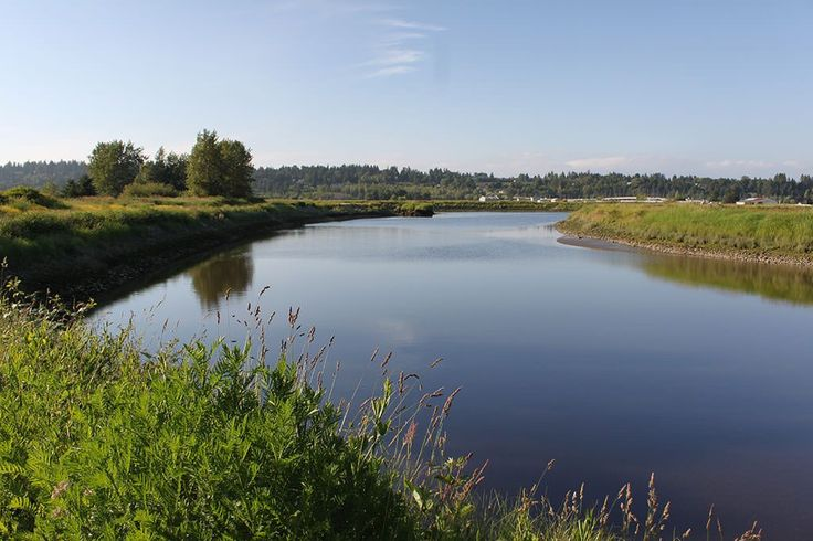 You don't always need to go all the way out to the North Shore to get a nice hike in. Check out some of these spots to hit the trails in the Surrey and Langley areas.  While they're mostly trail walks and have minimal elevation—they will still force you to get outside and enjoy the beautiful scenery.