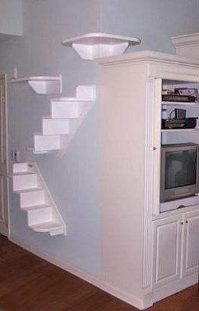 cat wall shelves | ... Cat Furniture, Trees, Shelves and Stairs | Our Wall Mounted Cat
