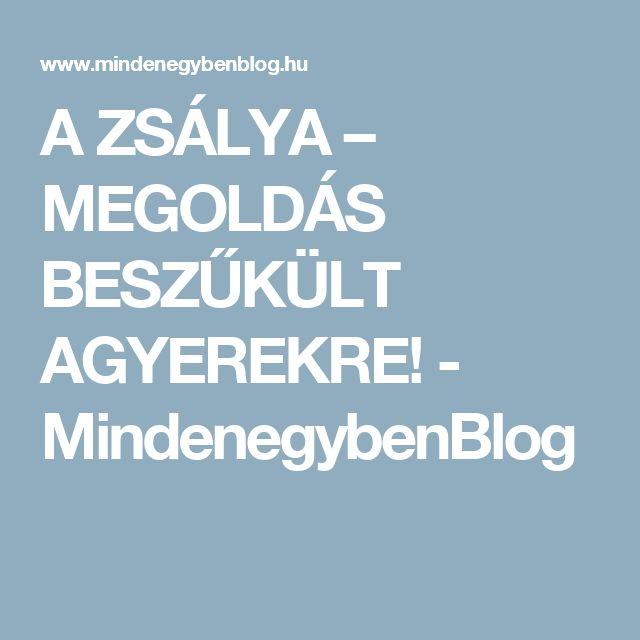 A ZSÁLYA – MEGOLDÁS BESZŰKÜLT AGYEREKRE! - MindenegybenBlog