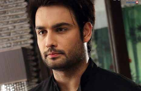 Will you watch Madhubala without Vivian Dsena (RK)? | Tellychakkar.com