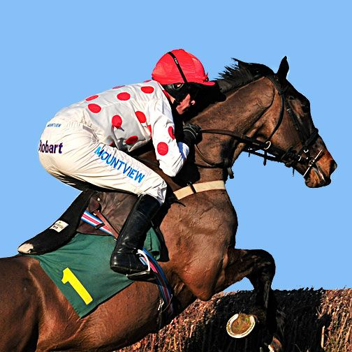 Full race guide to the Crabbie's Grand National 2016, view all the horses running, latest betting odds, PLUS free bet offers and tips.