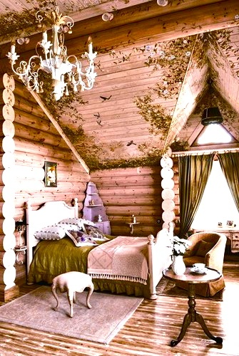 crazy fantasy room