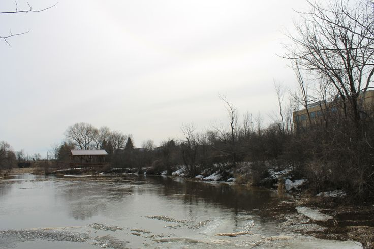 The Creek behind our school, with our Outdoor Classroom in the distance!