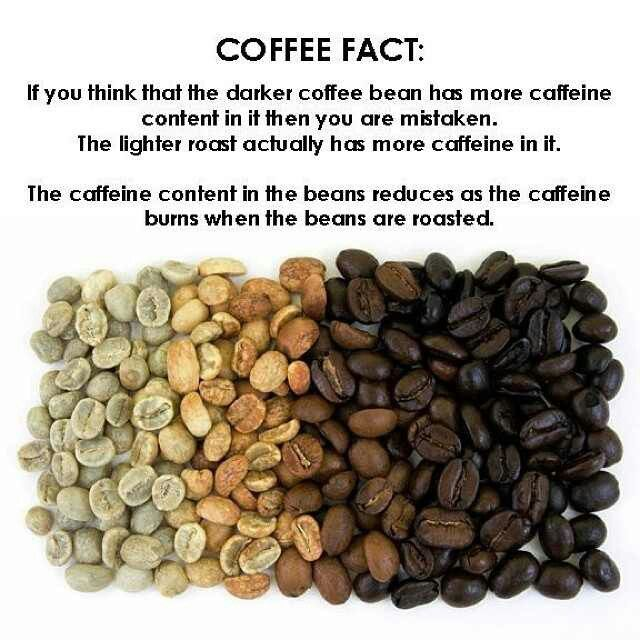 Coffee roasts - hmmm... I did not know that... ☕️~DID YOU KNOW~☕️