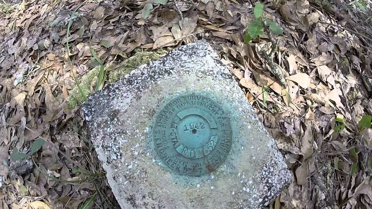 1942 Survey Benchmarker in Jennings State Forest