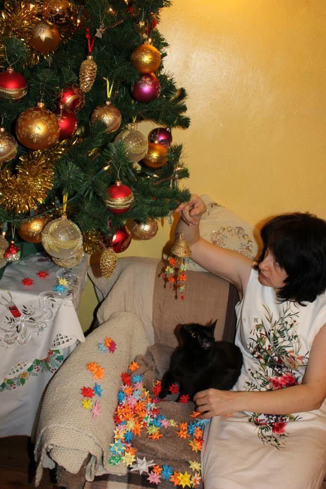 Czarnuszek pomaga w przygotowaniach Autor: Kazimiera Czabaj   #QSQ #Christmas #tree #ornament #inspiration #idea #decor #stars #cat