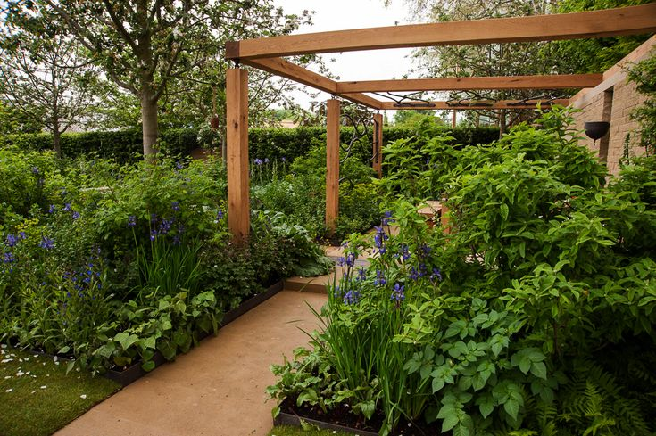 Homebase Garden RHS Chelsea Flower Show 2013. Click to read article and to see plants list used.