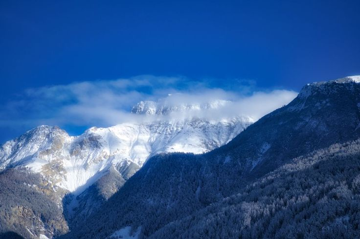 Winter Blue and white Day by Filipe Coelho