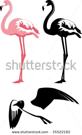 stock vector : Vector illustration of a birds. Pink, black and white.