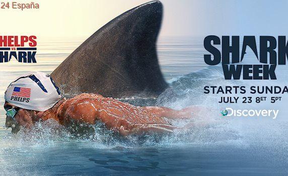 Phelps vive el «gran desafío» de nadar contra un tiburón blanco