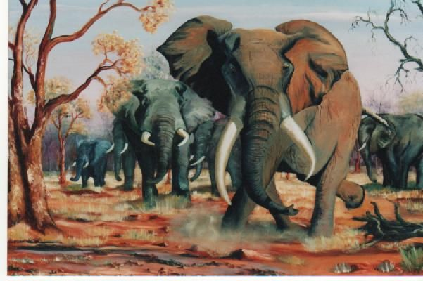 Elephants. Oil on canvas