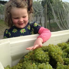 Lucy from Moores Hill. What a cheeky wee face, so happy to check the riesling!