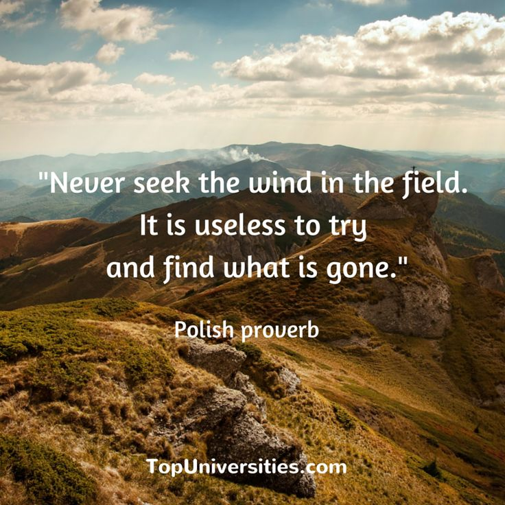 """""""Never seek the wind in the field. It is useless to try and find what is gone"""" Polish proverb  #quotes #inspirational #QSWUR #EECA"""