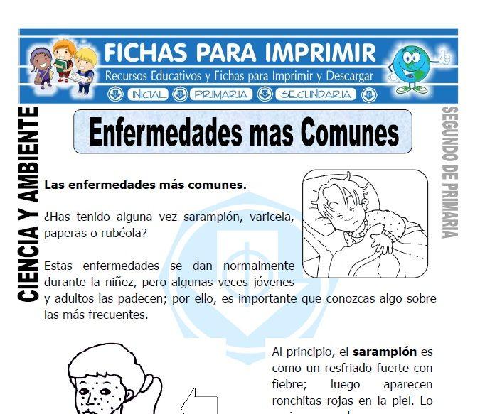 Ficha Enfermedades Mas Comunes Segundo De Primaria Enfermedades Enfermedades Comunes Fichas