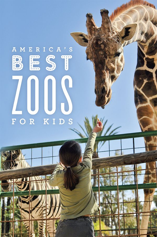 America's Best Zoos for Kids!
