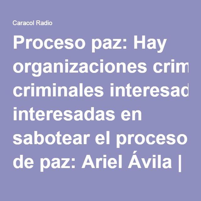 Proceso paz: Hay organizaciones criminales interesadas en sabotear el proceso de paz: Ariel Ávila   Actualidad   Caracol Radio