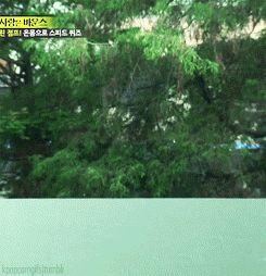 Lee Kwang-Soo, Running Man