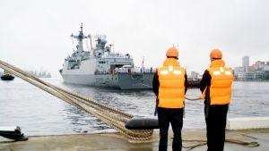 Жителей Владивостока запустят на южнокорейские военные корабли сегодня на несколько часов https://rusevik.ru/news/358959