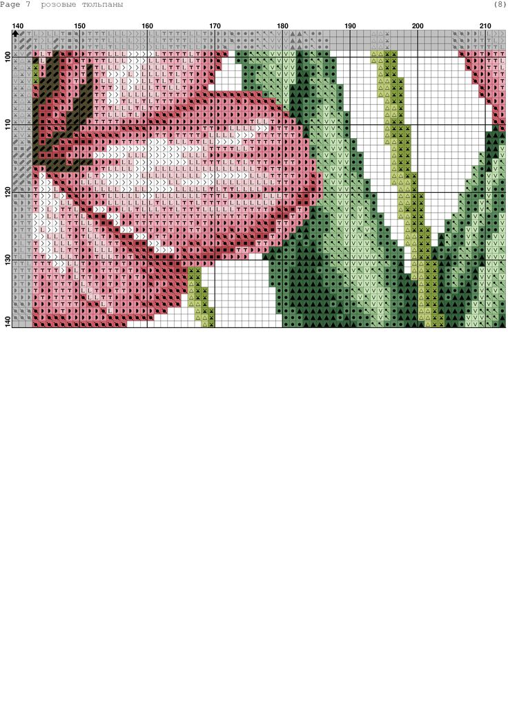 Fresh Tulips 9