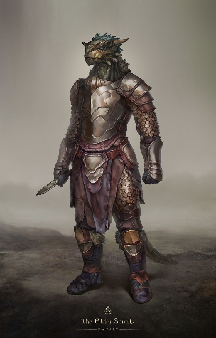 My fan art for a series of game: The Elder Scrolls. I painted my favorite race in the game and added a new design of equipment.