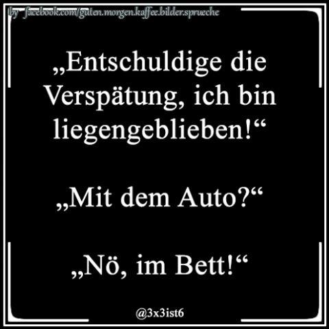 #humor #laugh #fun #sprüche #ironie #chats #sprüchezumnachdenken