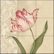 Cream Tulip - DL - Tile Mural