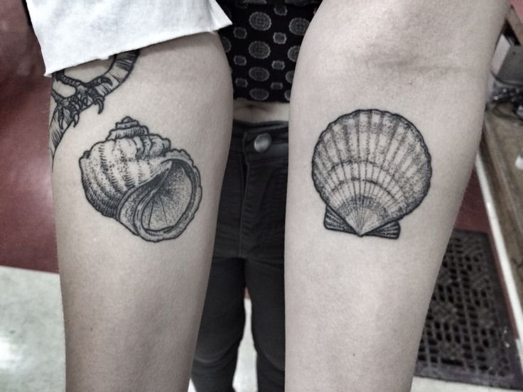Seashell tattoos. Dotwork. By Jennifer lawes.