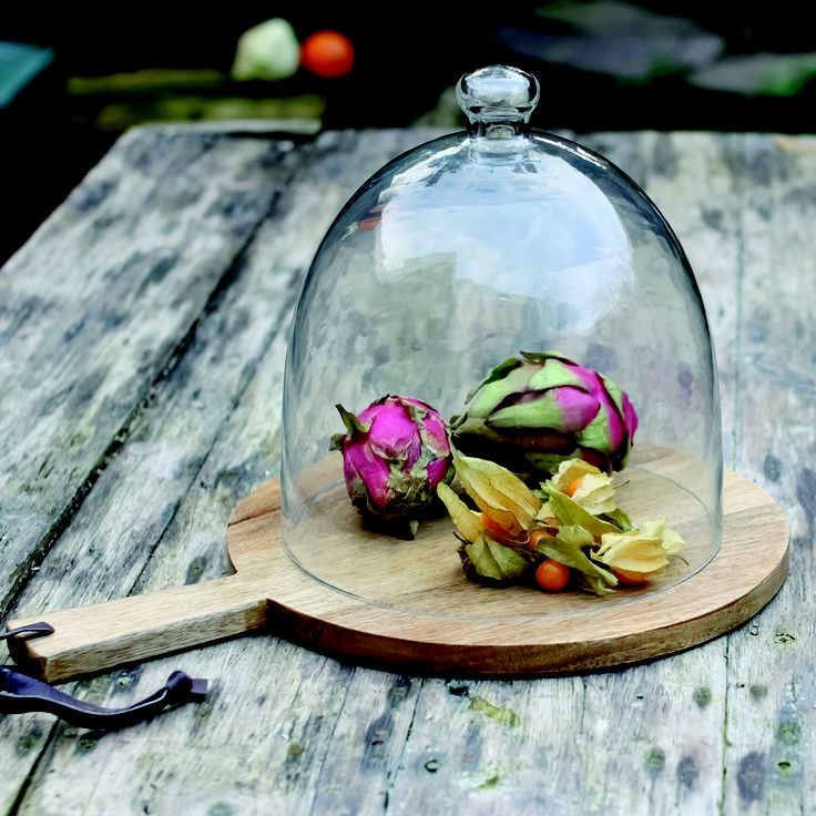 Recycled glass dome for food or still life.