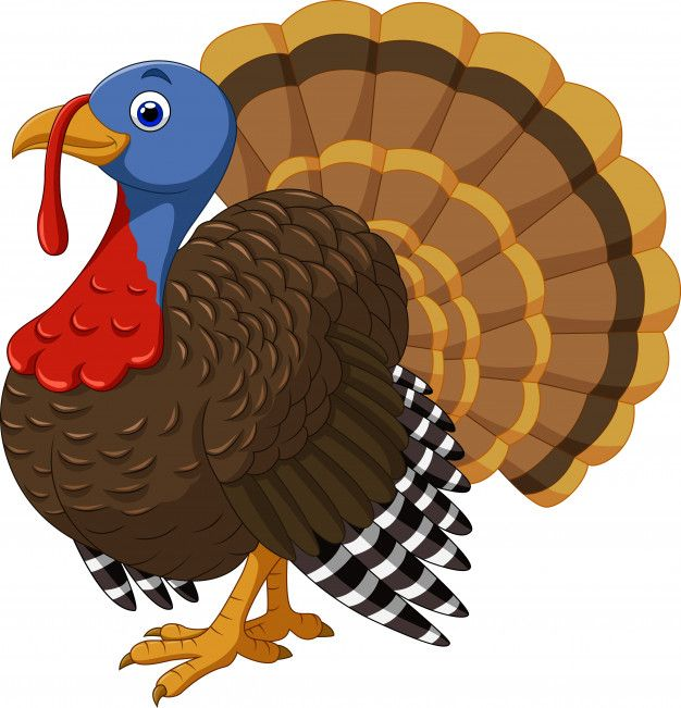 Personaje De Pavo De Dibujos Animados Ve Premium Vector Freepik Vector Hoja Accion Gra Turkey Drawing Thanksgiving Clip Art Thanksgiving Turkey Images