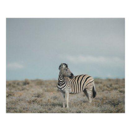 Plains Zebra   Equus burchellii Faux Canvas Print - plain gifts style diy cyo