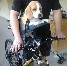 Buddyrider™ Bicycle Pet Seat | About Buddyrider