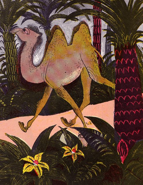 The Camel Who Took A Walk - illustrated by Roger Duvoisin