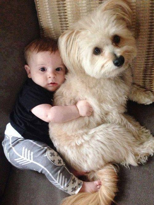 kids -  dog