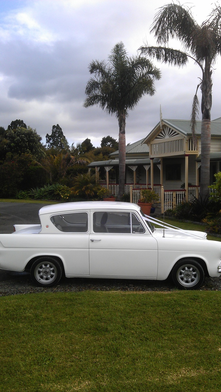 Old Anglia used as a wedding car recently by guests at the Lodge.  #lodge #wedding #venue #matakana