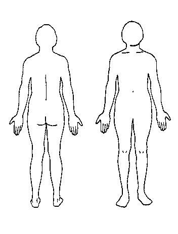 Body Outline Diagram Outline Of A Body Cliparts Co Jpg 352 464 Body Outline Body Template Body