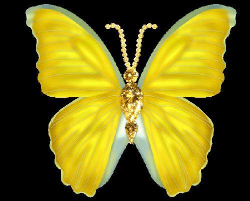 бабочка-бантик.gif