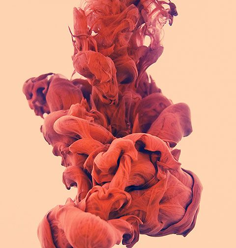 Best Modern Art Underwater Ink Photographs By Alberto Seveso - New incredible underwater ink photographs alberto seveso