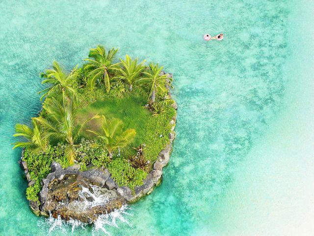 #hawaii #island #ö #paradis #paradise #honolulu #travel #resa #sol #strand #palm #äventyr #semester
