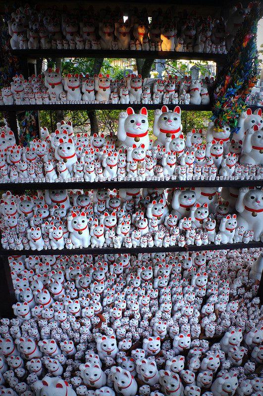 豪徳寺 東京都世田谷区 Gotoku-ji Temple, Setagaya, Tokyo, Japan