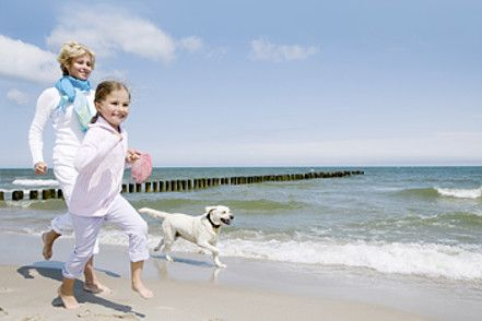 Eine Familie die mit einem Hund am Strand spielt