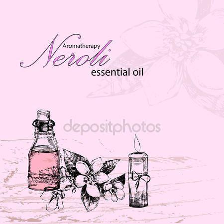 Vektorové ilustrace esenciální olej z neroli — Stocková ilustrace #106736252