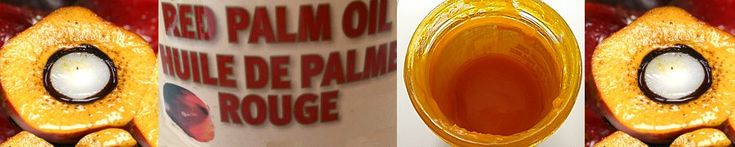 Red palm oil is one of the latest *superfoods* that has those who are health oriented in our society or within the natural health community talking. In the midst of breaking through the myth that all saturated fat is bad, we are now more willing and eager in fact, to consider tropical oils like red palm oil, which is primarily saturated fat based. The miraculous health claims and nutritious benefits are competing for our attention, but are they telling the whole story? In this essay, I will…