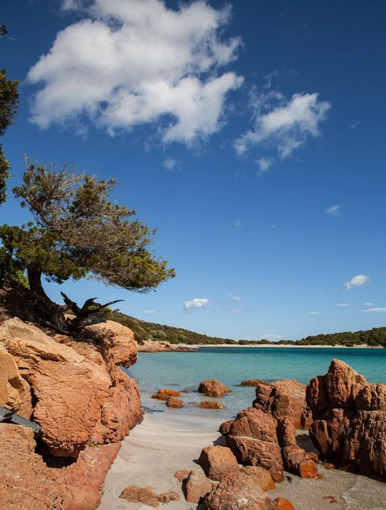 Pas besoin de partir loin pour bénéficier d'un cadre idyllique ! #Corse #plage #paysage #paradis #landscape