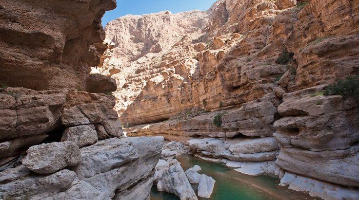 Explore Oman Naturally | Bench Africa