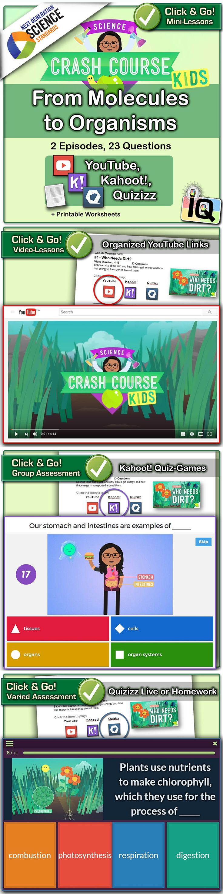 Freebie!  Just Point and Click for instant Mini-Lessons with Game-Based Assessment! ... Crash Course Kids, From Molecules to Organisms - Interactive Quizzes ... The Crash Course videos and Interactive Quizzes in this series are aligned with Next Generation Science Standards: � 5-LS1-1: From Molecules to Organisms ... https://www.teacherspayteachers.com/Product/Crash-Course-Kids-From-Molecules-to-Organisms-IQ-NGSS-with-worksheets-2943327    �  Game-based learning with Quizizz and Kahoot!